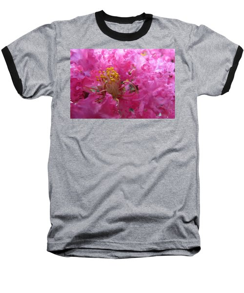 Crepe Myrtle In The Middle Baseball T-Shirt by Fortunate Findings Shirley Dickerson