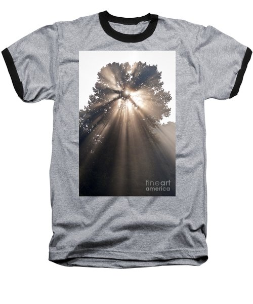 Crepuscular Rays Coming Through Tree In Fog At Sunrise Baseball T-Shirt
