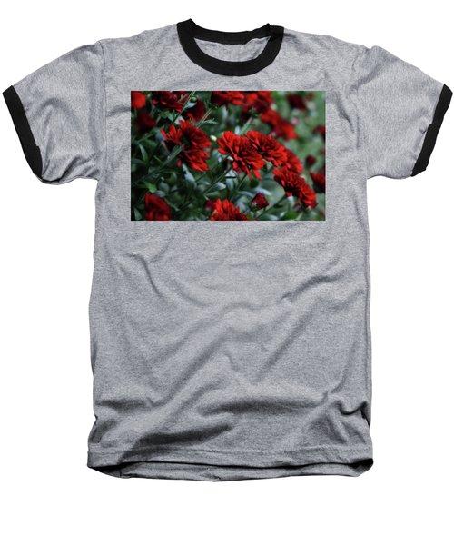 Crimson And Clover Baseball T-Shirt