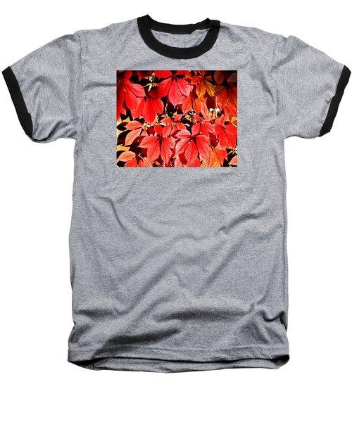 Baseball T-Shirt featuring the photograph Crimson Virginia Creeper 2 by Danielle  Parent