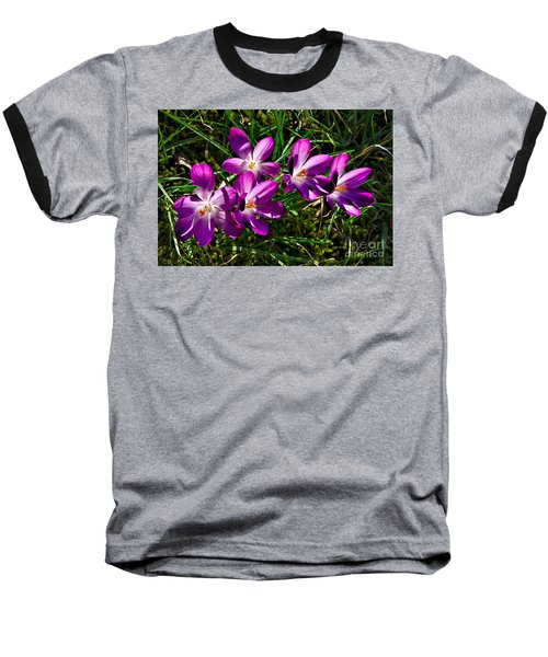 Crocus In The Grass Baseball T-Shirt