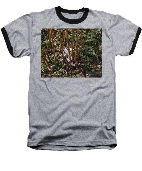 Baseball T-Shirt featuring the photograph Crocuses And Raspberry Canes by Donald S Hall