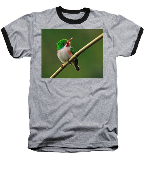 Cuban Tody Baseball T-Shirt by Tony Beck