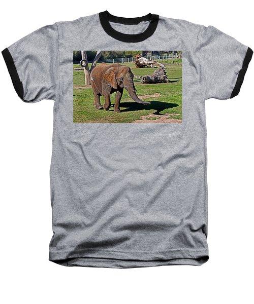 Cuddles Searching For Snacks Baseball T-Shirt