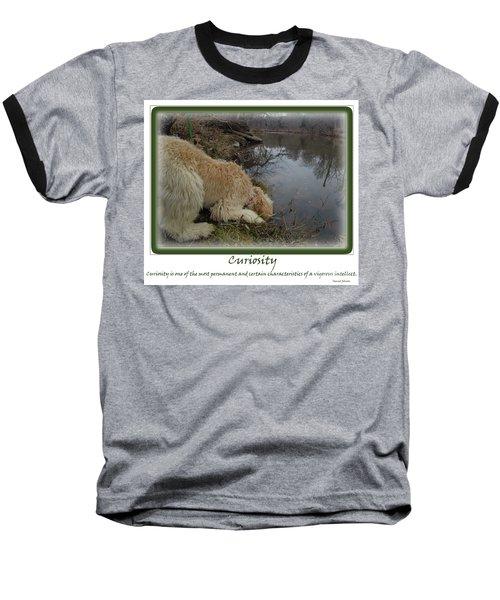 Curiosity Of A Puppy Baseball T-Shirt