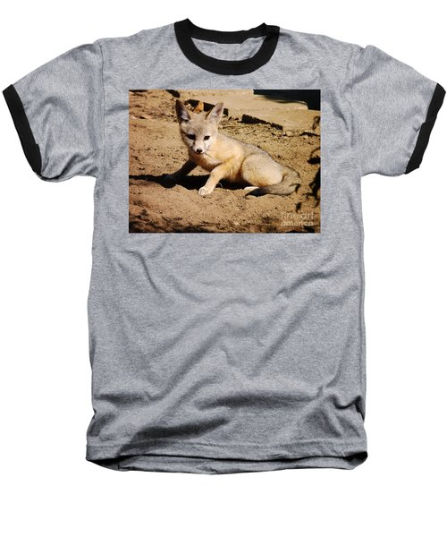 Curious Kit Fox Baseball T-Shirt