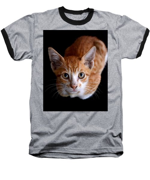 Cute Kitten Baseball T-Shirt