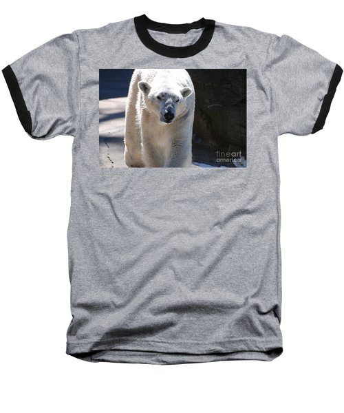 Cute Polar Bear  Baseball T-Shirt by DejaVu Designs