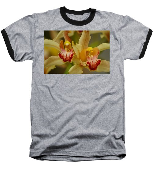 Cymbidium Twins Baseball T-Shirt