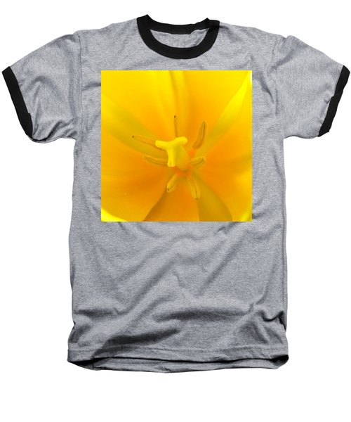 Daffodil Center Baseball T-Shirt