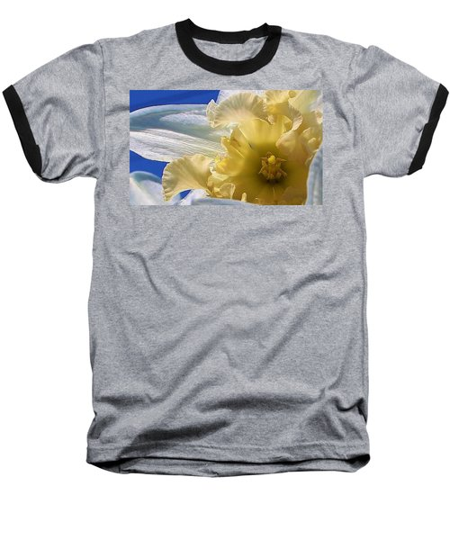 Baseball T-Shirt featuring the photograph Daffodil In The Sun by Bruce Bley