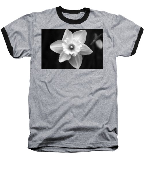 Daffodils - Infrared 01 Baseball T-Shirt