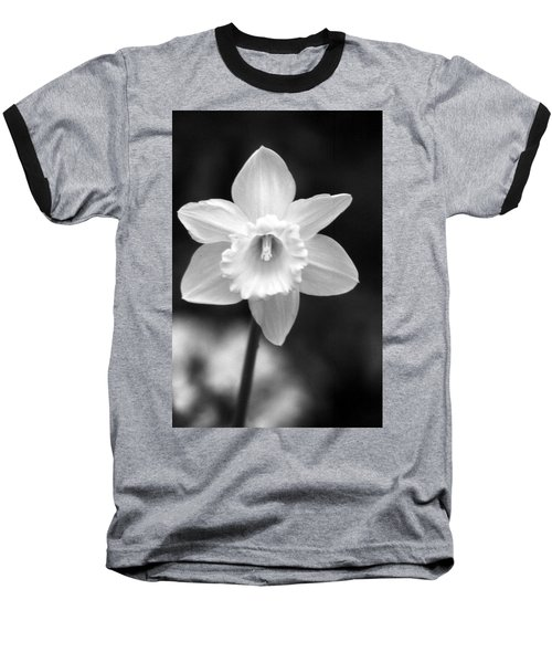 Daffodils - Infrared 10 Baseball T-Shirt