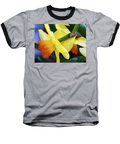 Daffodils With Rain Baseball T-Shirt by Joe Schofield