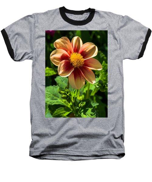 Dahlia 4 Baseball T-Shirt