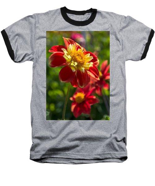 Dahlia 5 Baseball T-Shirt