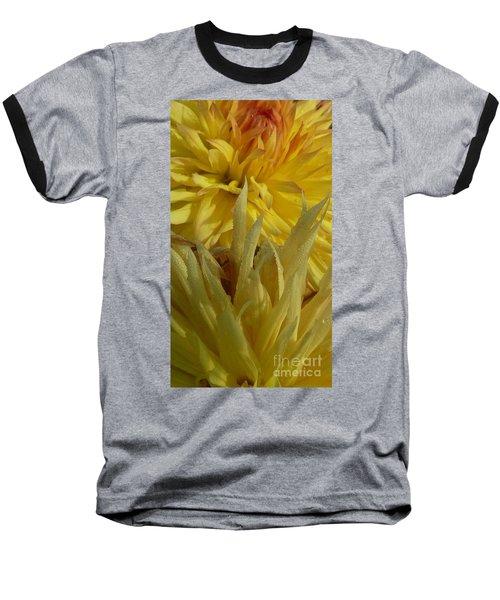 Dahlia Dew Yellow Baseball T-Shirt by Susan Garren
