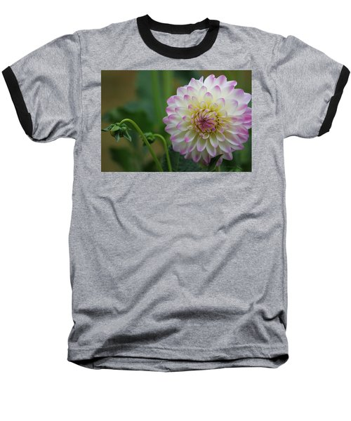 Dahlia In The Mist Baseball T-Shirt