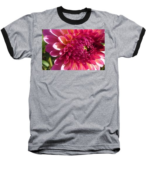 Dahlia Pink 1 Baseball T-Shirt by Susan Garren
