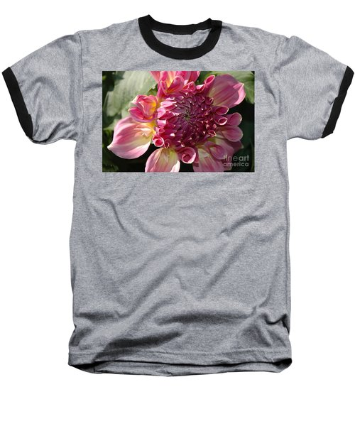 Dahlia V Baseball T-Shirt by Christiane Hellner-OBrien