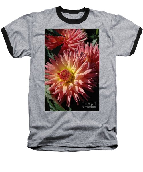 Dahlia Viii Baseball T-Shirt by Christiane Hellner-OBrien