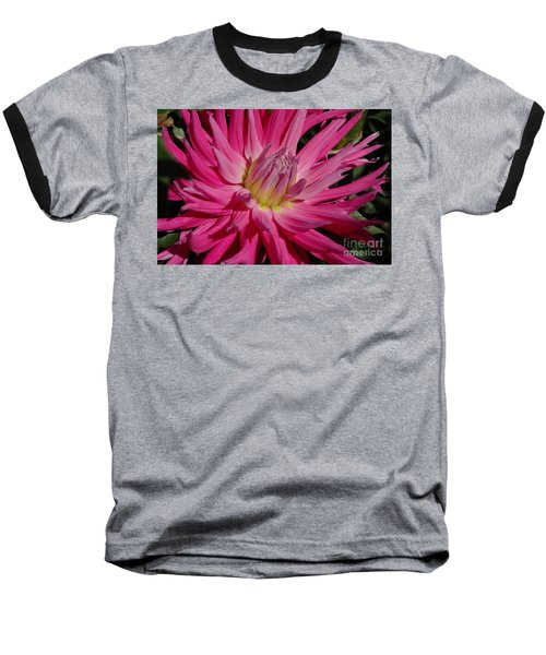 Dahlia X Baseball T-Shirt by Christiane Hellner-OBrien