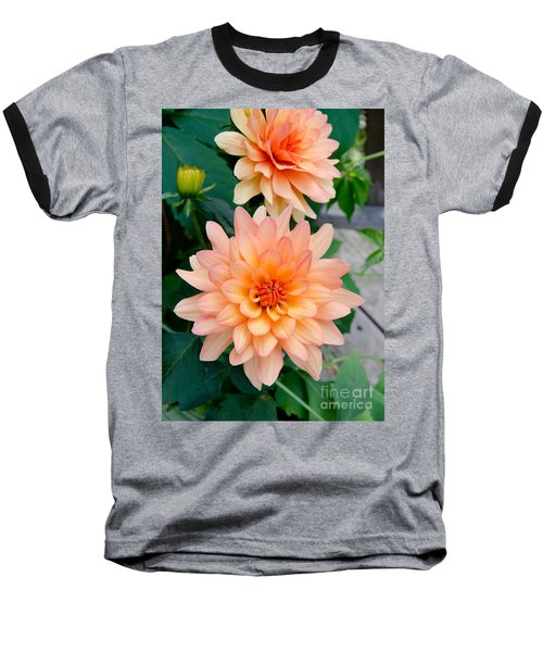 Dahlias Baseball T-Shirt