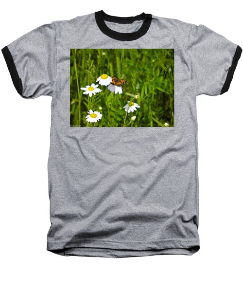 Daisey And Butterfly Baseball T-Shirt