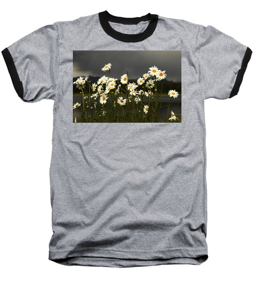 Daisies In Storm Light Baseball T-Shirt