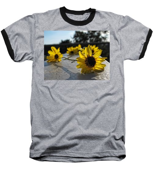 Daisy Daisy Give Me Your Answer Baseball T-Shirt
