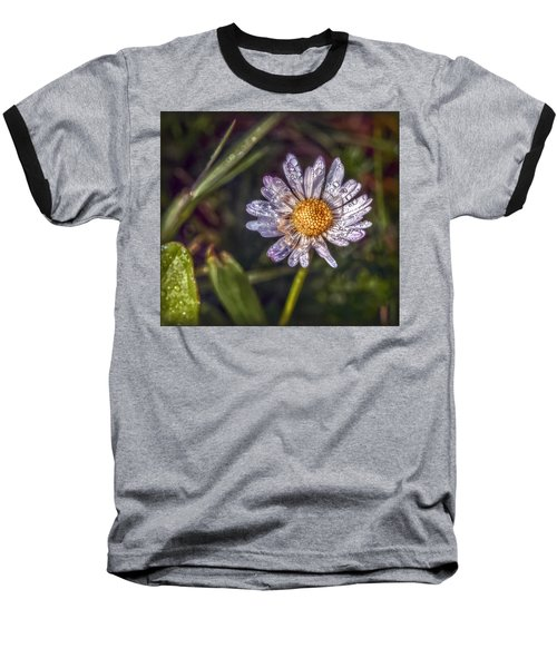 Baseball T-Shirt featuring the photograph Daisy by Hanny Heim