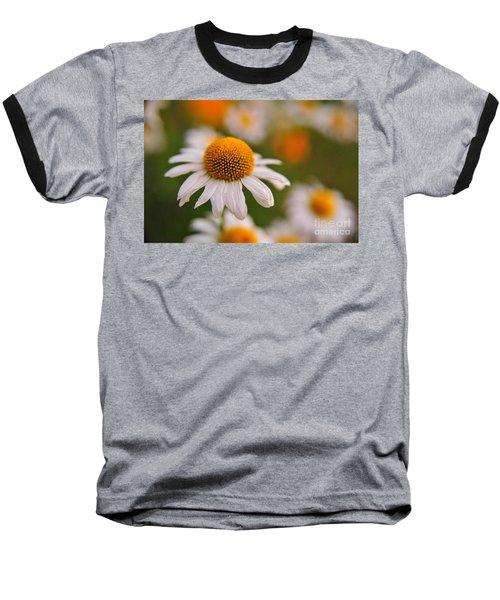 Daisy Power Baseball T-Shirt by Terri Gostola