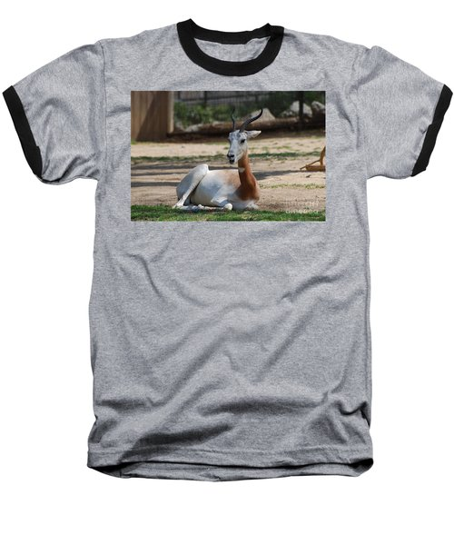 Dama Gazelle Baseball T-Shirt by DejaVu Designs