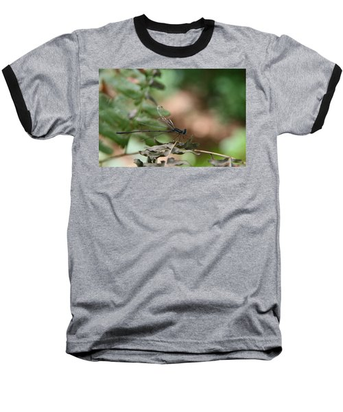 Damselfly Baseball T-Shirt by Neal Eslinger