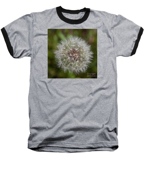 Dandelion Clock Baseball T-Shirt
