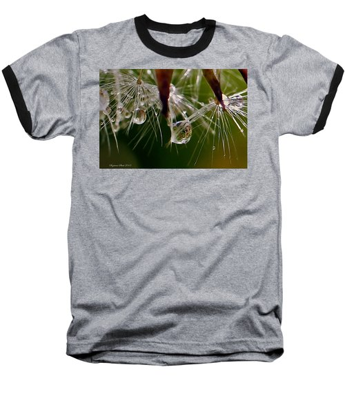 Dandelion Droplets Baseball T-Shirt by Suzanne Stout