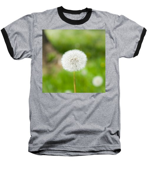 Dandelion Puffball Baseball T-Shirt