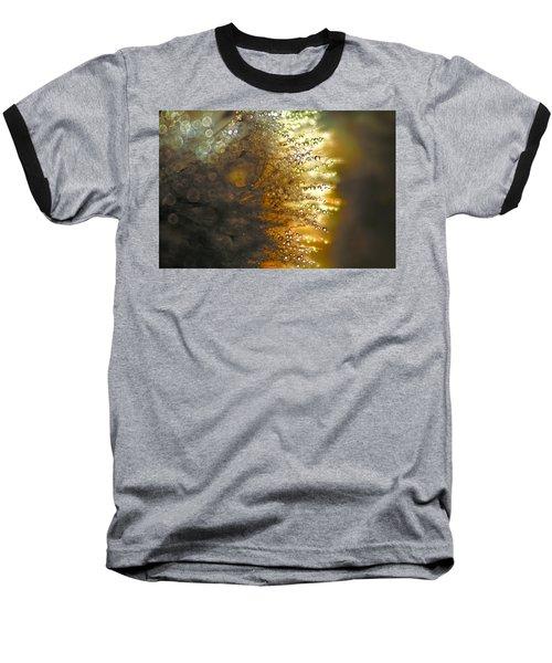 Dandelion Shine Baseball T-Shirt by Peggy Collins