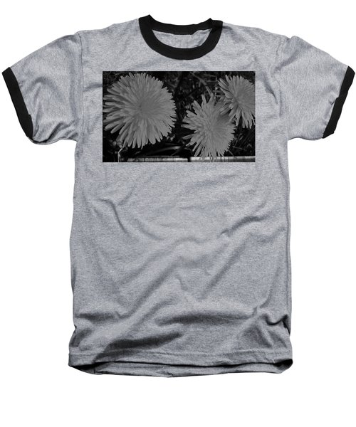 Baseball T-Shirt featuring the photograph Dandelion Weeds? B/w by Martin Howard