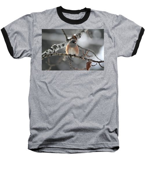 Dark-eyed Junco Baseball T-Shirt