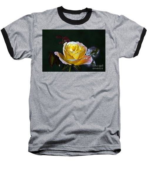 Baseball T-Shirt featuring the photograph Day Breaker Rose by Kate Brown