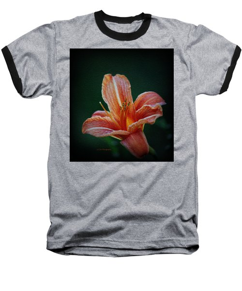 Day Lily Rapture Baseball T-Shirt