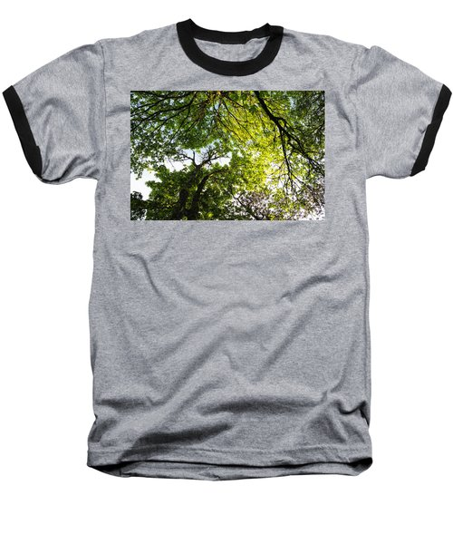 Daydreaming In The Hammock Baseball T-Shirt