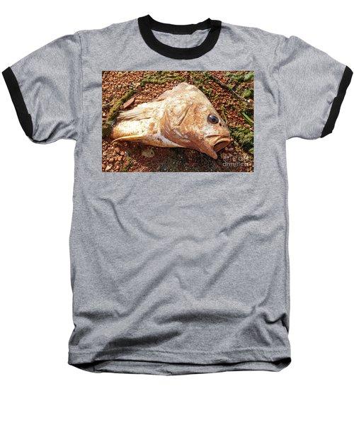 Dead Or Alive? Baseball T-Shirt