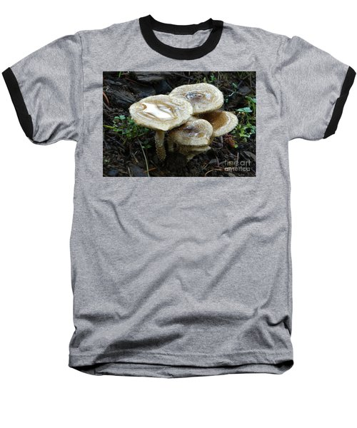 Baseball T-Shirt featuring the photograph Deadly Beauty 1 by Chalet Roome-Rigdon