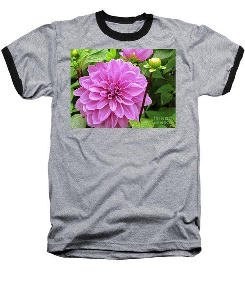 Decadent Dahlia   Baseball T-Shirt