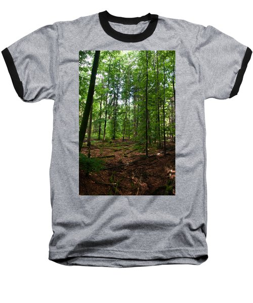 Deep Forest Trails Baseball T-Shirt by Miguel Winterpacht