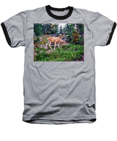 Baseball T-Shirt featuring the photograph Deer 1 by Dawn Eshelman
