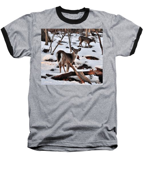 Deer And Snow Baseball T-Shirt