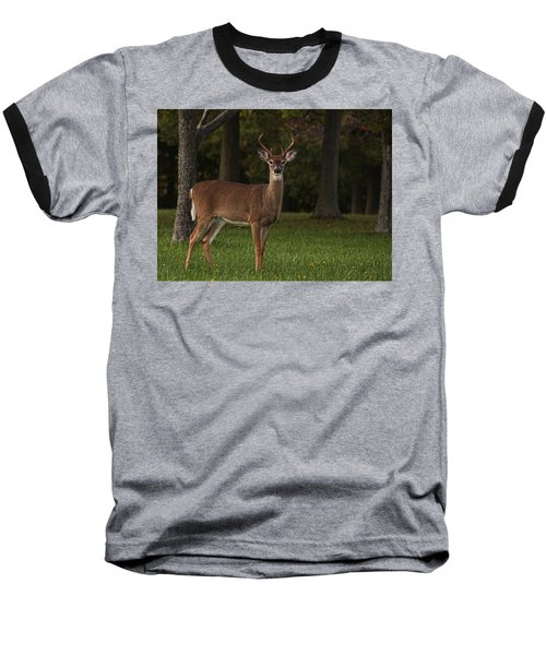 Baseball T-Shirt featuring the photograph Deer In Headlight Look by Tammy Espino